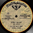 "Black Redemption - Lions Den - Eu Fikir Amlak - imperial Sound Army - Jah Marcus Dont Sleep - Sleep Not Dub - Listen - Listen Dub X Uk Dub 10"" rv-10p-01075"