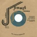"Jammys - Dub Store - Japan Tonto irie Life Story - Version Sleng Teng Early Digital 7"" rv-7p-09074"