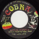 "Cobra - Dub Store - Japan Aston Family Man Barrett - The Rebel Arms - The Wailers Eastern Memphis - Rebel Am i X Oldies Classic 7"" rv-7p-12200"