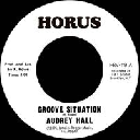 """Horus - Uk Audrey Hall - Jrm Orchestra Groove Situation - Situation Version X Oldies Classic 7"""" rv-7p-15118"""