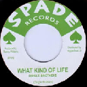 """Spade - Reggae Fever - Eu Dingles Brothers - Les Foster What Kind Of Life - Run Like A Thief Vietcong Oldies Classic 7"""" rv-7p-16225"""